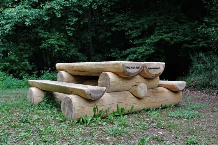 Picknickstisch im Wald