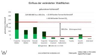 gebundener Kohlenstoff in Wäldern